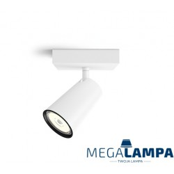 50571/31/PN Philips Paisley BIAŁY Oświetlenie punktowe